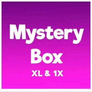 Mystery Box Size XLarge/1X mixture
